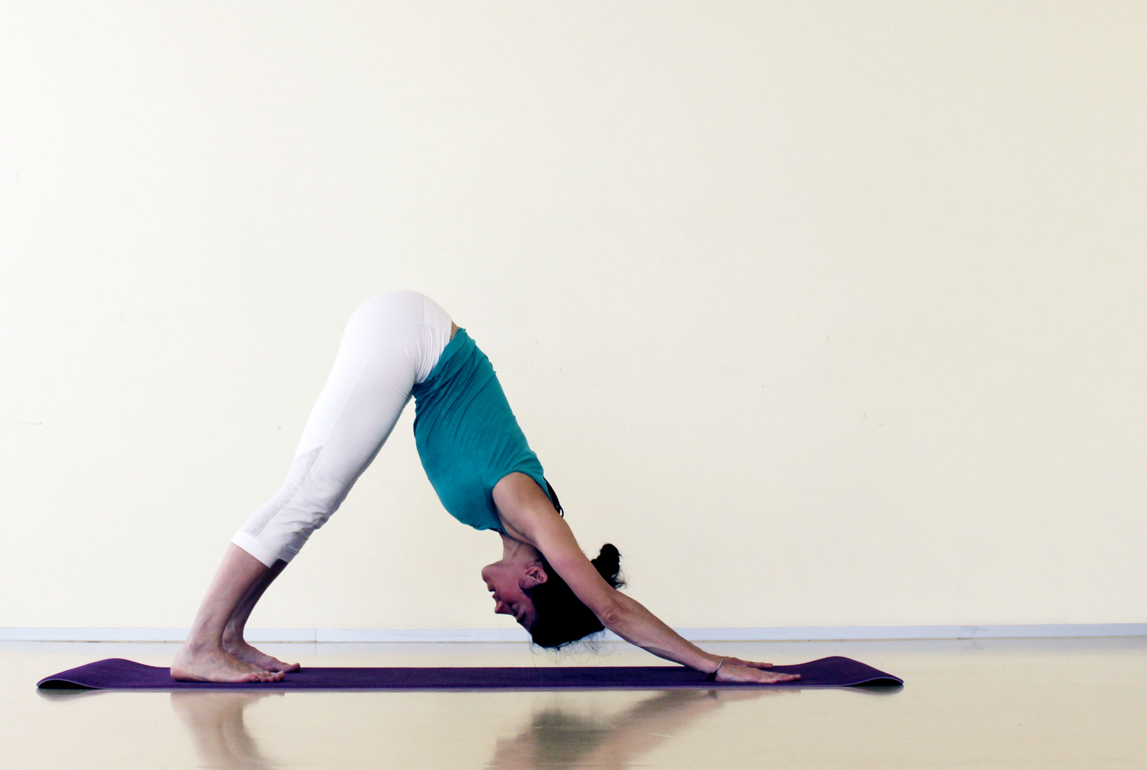 Adho Mukha Svanasana. Postura del Perro boca abajo   Amara Yoga Pamplona