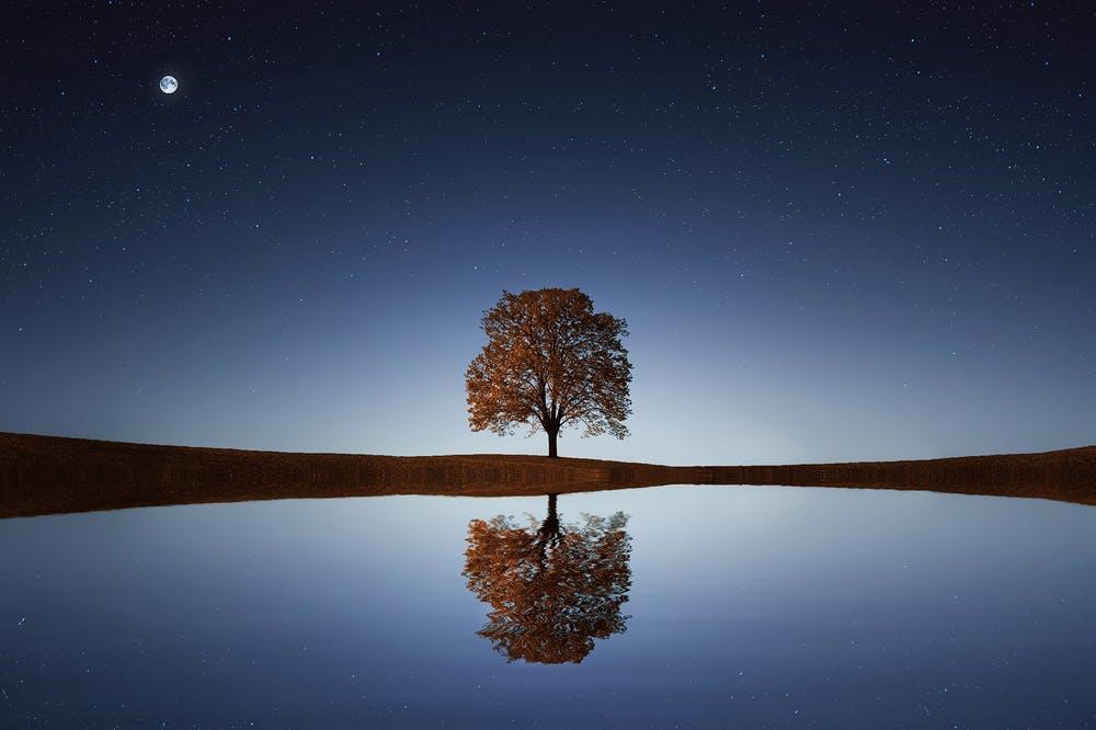 Resiliencia ante el estrés